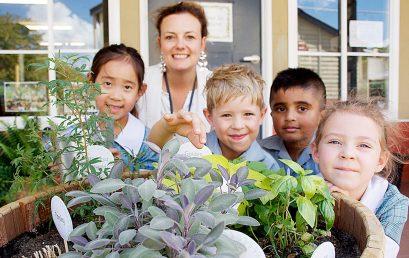 Growing Gardens for the Senses